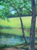 Pond at Ayr Mount