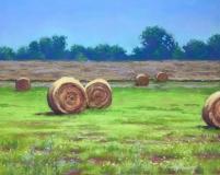 Sweet Summer Hay
